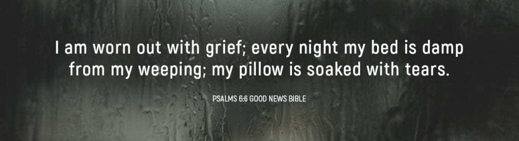 Verse Psalms 6:6 Good News Bible